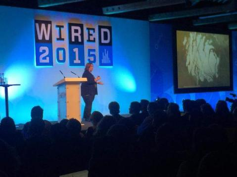 Meg Schwamb from the Planet Four Team talking about the project at WIRED2015 - image credit: @blkbeveragesUK (https://twitter.com/blkbeveragesUK)