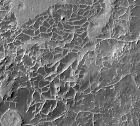 A polygonal ridge network in the eastern Arabia Terra region of Mars. This image shows an area about 4 kilometers across
